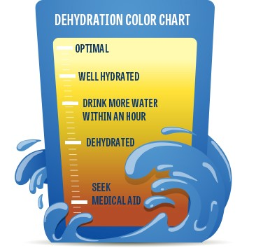 Dehydration Color Chart